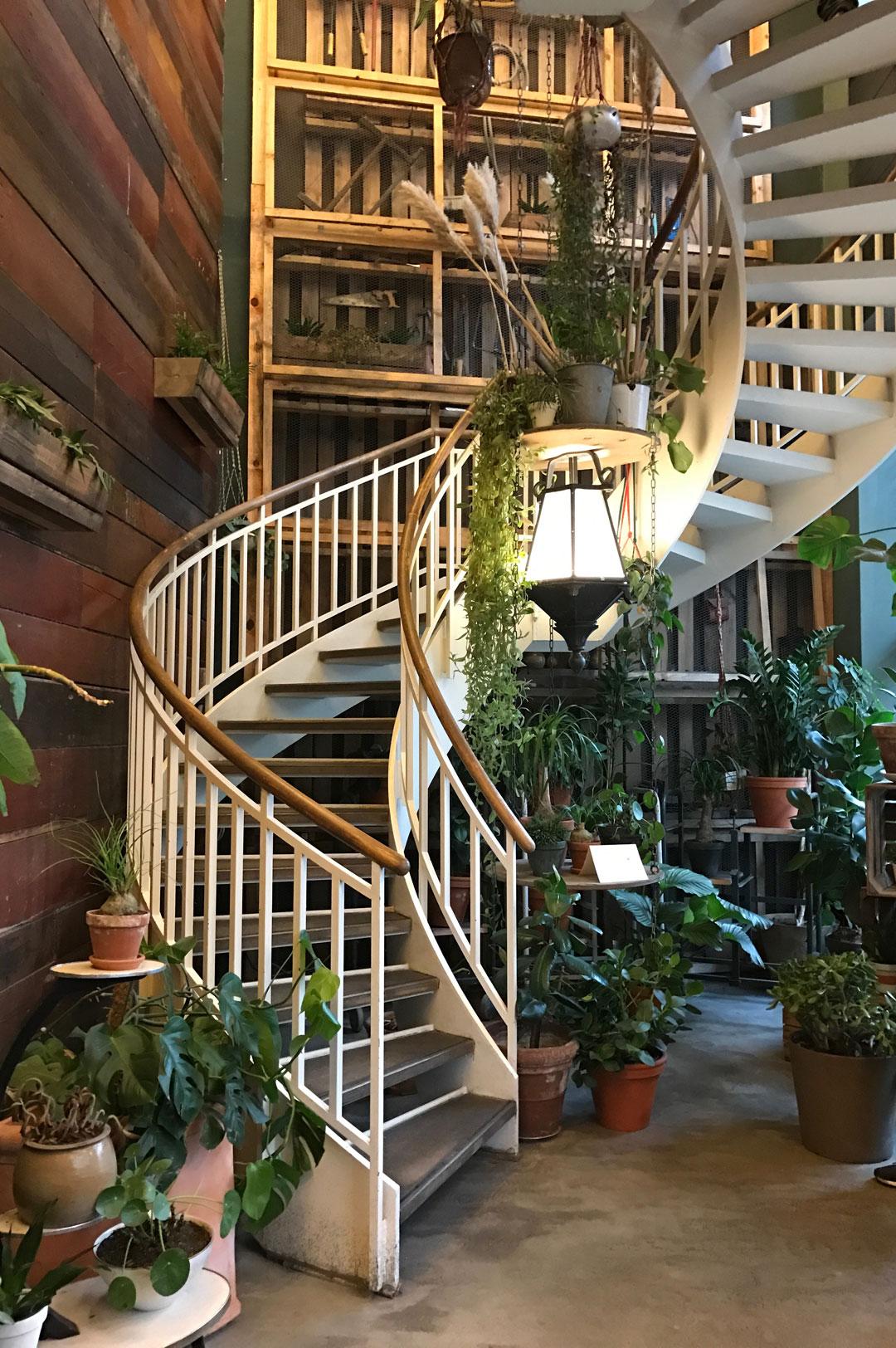 Mittagessen im House of Small Wonder in Berlin Mitte | www.dearlicious.com